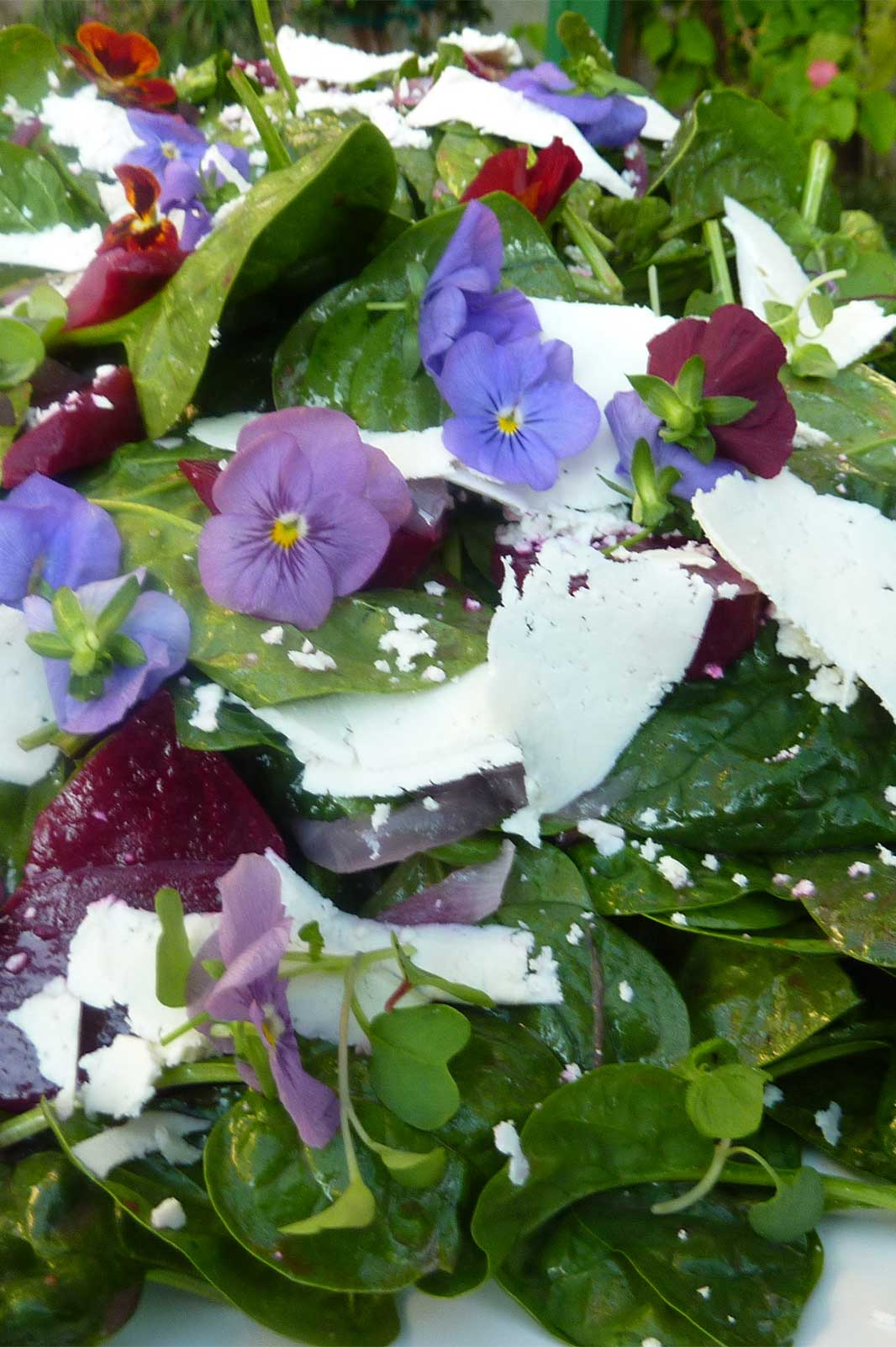 Beet Spinach Salad with flowers